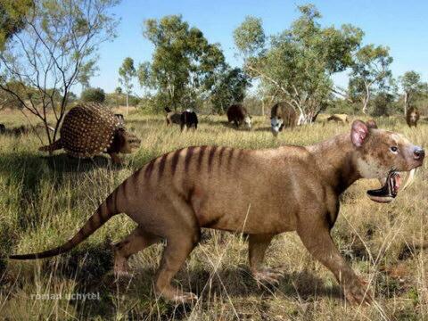 animales que hoy son africanos, viven en Europa y América del Norte ...